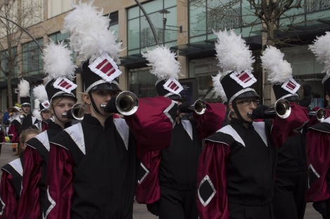 St_Davids_Parade_Cardiff_2015_Peppe_ - 26