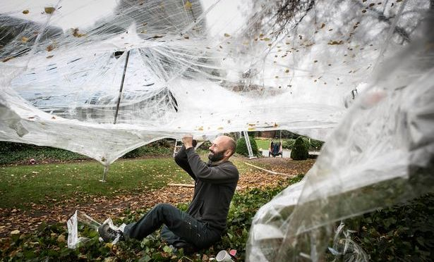 Giant spider webs due to hit Bute Park in August 2015 …