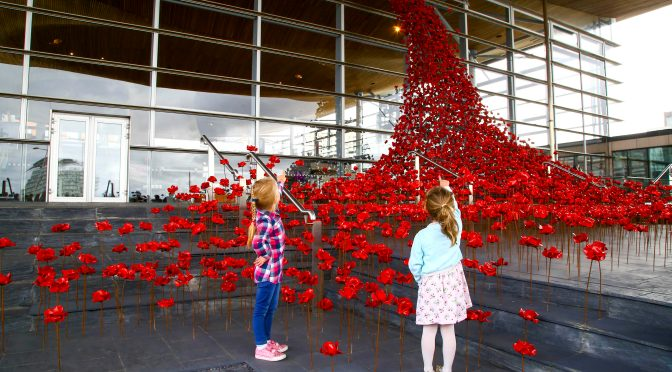 Iconic poppy sculpture Weeping Window opens at the Senedd